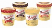 New flavors form Yuengling's Ice Cream.