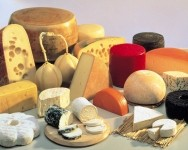 Cheese-making 7,500 years old, experts claim