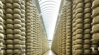 Apac cheese market to leap to $15.5bn by 2021