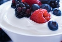 WhiteWave expands in competitive U.S. yogurt category with Wallaby buy