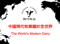 China Modern Dairy has distanced itself from the reports, while Mengniu has flat-out denied that talks are on-going.